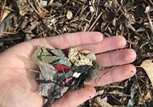 Finding Treasure