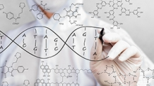 Wellesley students explore DNA modification, politics of healthcare, and many more topics in Calderwood Seminars