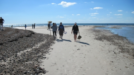 Students sampling on beach in Massachusetts