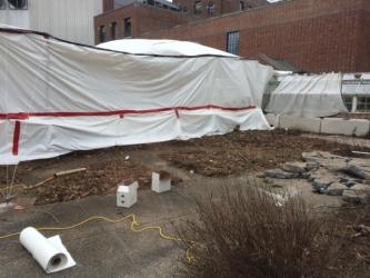 Greenhouse demolition
