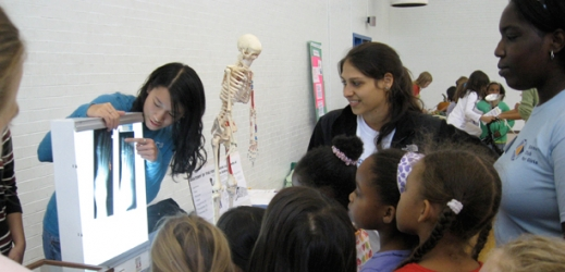 students in class studying x-rays
