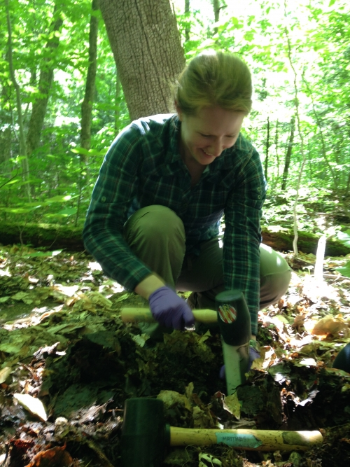 Matthes collects soil cores at Hubbard Brook for experiments back at Wellesley