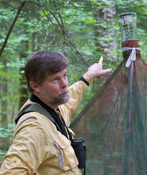 Nick with a Malaise trap for capturing insects